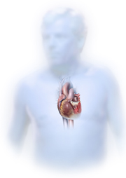 Cara Mengatasi Penyakit Hepati