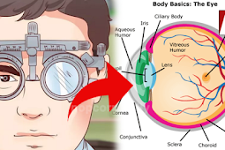 Here are Simple Tricks that Can Help You Improve Your Vision Without the Use of Glasses! Must See!