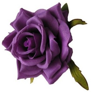 gambar bunga mawar indah 27