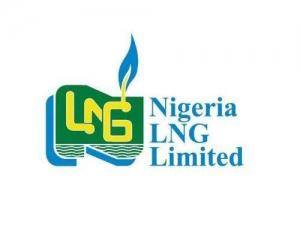 Nigeria LNG Limited Undergraduate Scholarship 2018