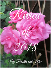 DAPHNE'S REVIEW OF 2018