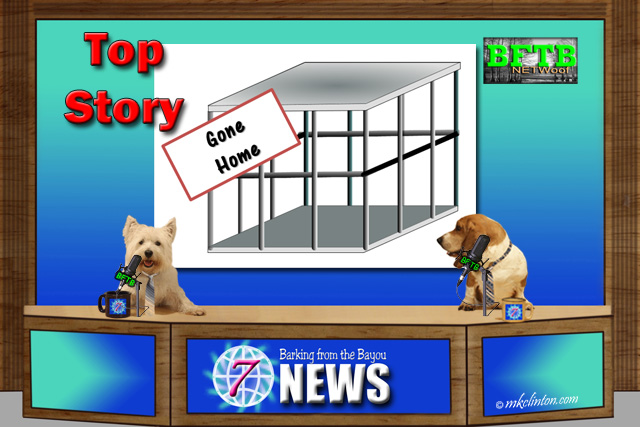 BFTB NETWoof News Top Story on a shelter that adopted out all their dogs and cats