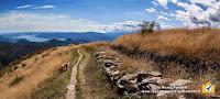 Lago maggiore e linea Cadorna monte Spalavera