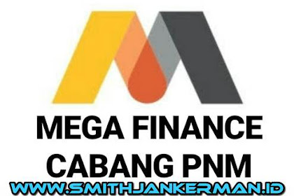 Lowongan PT. Mega Finance Pekanbaru Mei 2018