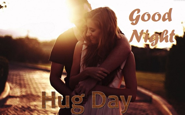 Hug Day Good Night Whatsapp Status DP