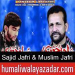 https://www.humaliwalyazadar.com/2018/09/sajid-jafri-nohay-2019.html