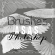Brushes para photoshop ♥