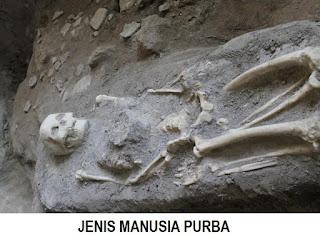 PERBEDAAN DAN JENIS MANUSIA PURBA INDONESIA, ASIA, EROPA, AFRIKA