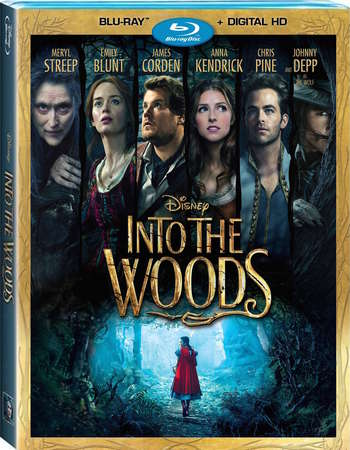 Poster Of Into the Woods 2014 English 350MB BRRip 480p ESubs Free Download Watch Online