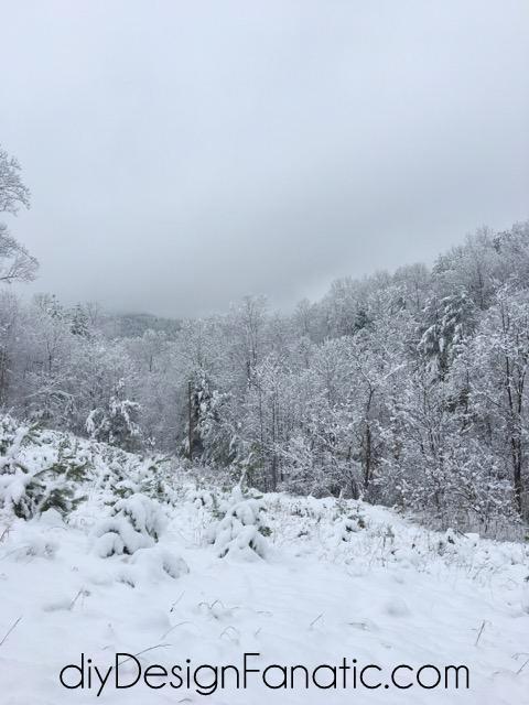 mountain cottage, snow, cottage, farmhouse, diyDesignFanatic.com