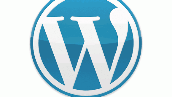 cara mengganti tema wordpress website anda
