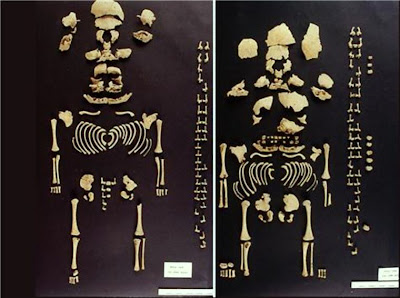 Ancient twins found in Barcelona dig hailed a first