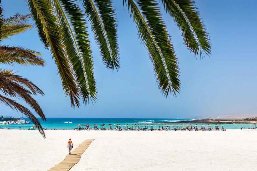Isole Canarie Last Minute: Fine estate sulle isole dell'eterna primavera