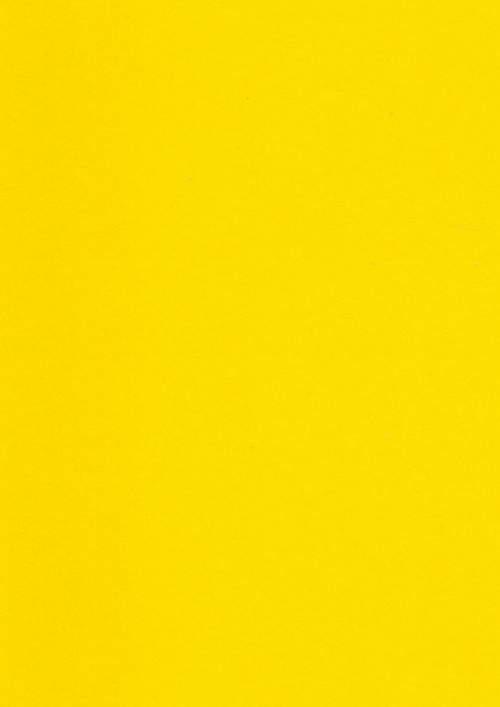 Rekk 243 Yellow