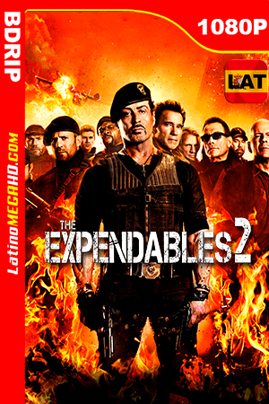 Los Indestructibles 2 (2012) Latino HD BDRIP 1080P ()