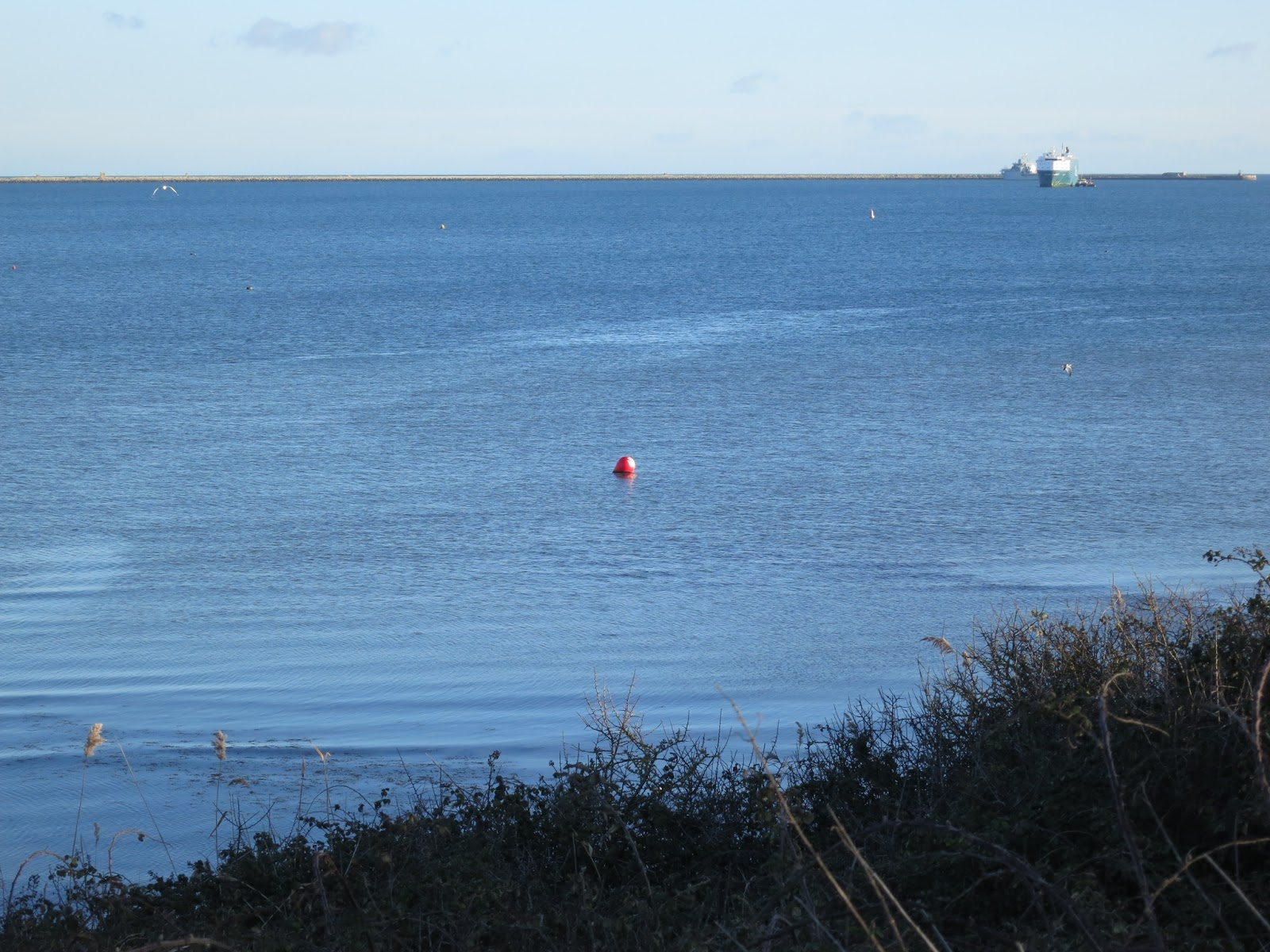 Red buoy in Portland Harbour, Dorset, with two ships and harbour wall beyond.