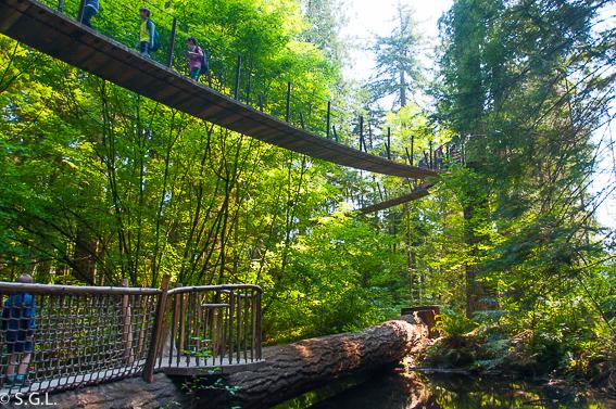 Treetops adventure en Capilano Park. Visitando Vancouver