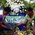 Contabilizan 139 muertos en Nicaragua por revueltas