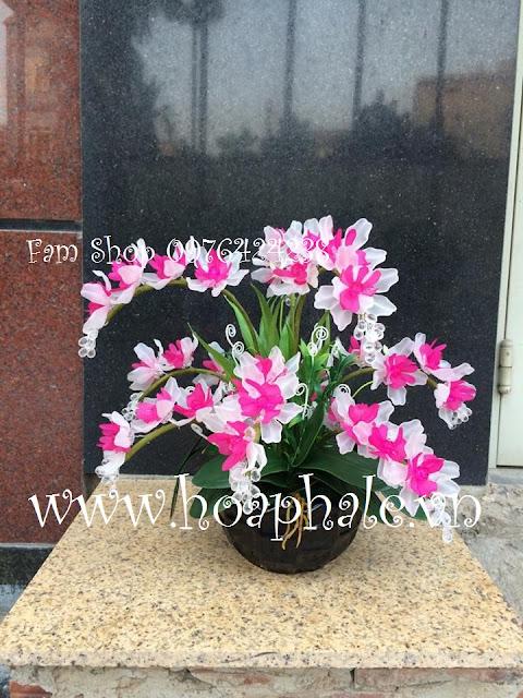 Hoa da pha le tai Cau Den
