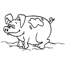 Pig Coloring Sheet Animals For Free Download