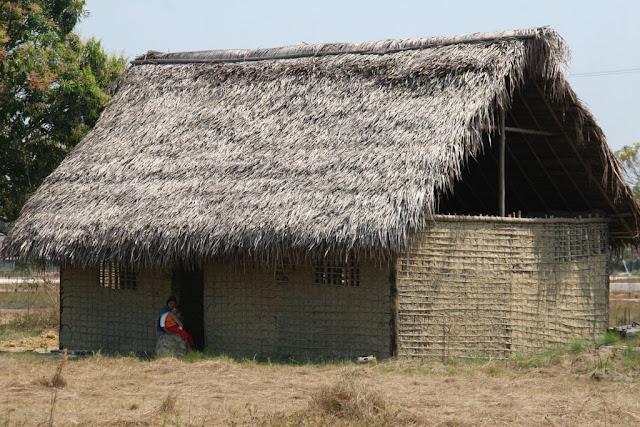 Autoridades de Amazonas confirman 7 casos de sarampión en comunidades yanomami