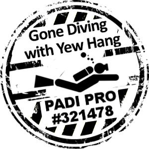 Go Pro Diving!
