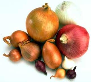 Foto de una variedad de cebollas