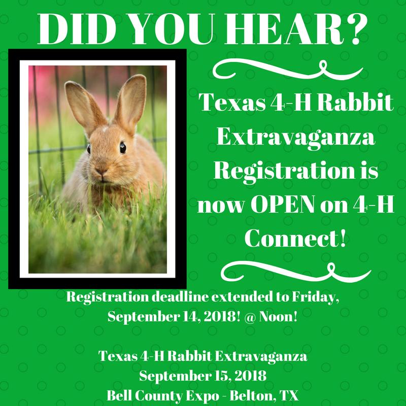 Rabbit Extravaganza Registration Deadline Extended | Texas 4