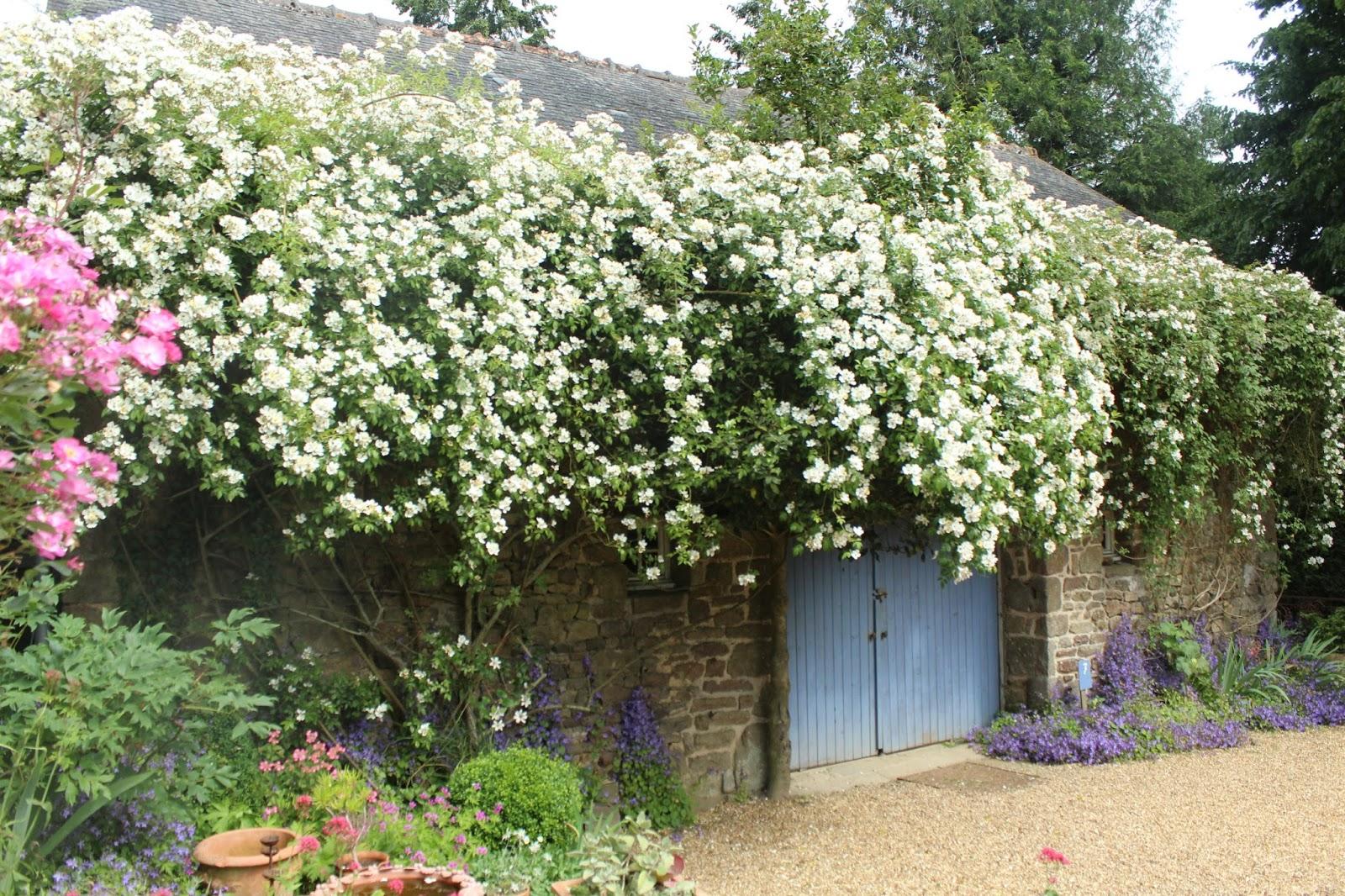 Carnet de balades dans l 39 orne en normandie le jardin de for La jardin restaurant 2016