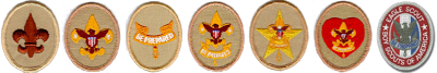 Boy Scout Merit Badges (Fair Use)