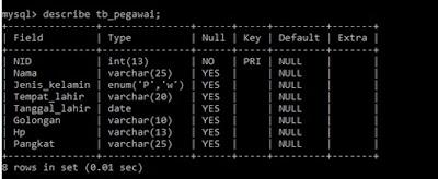 Cara Mudah Menambah Field Baru pada Tabel MySQL