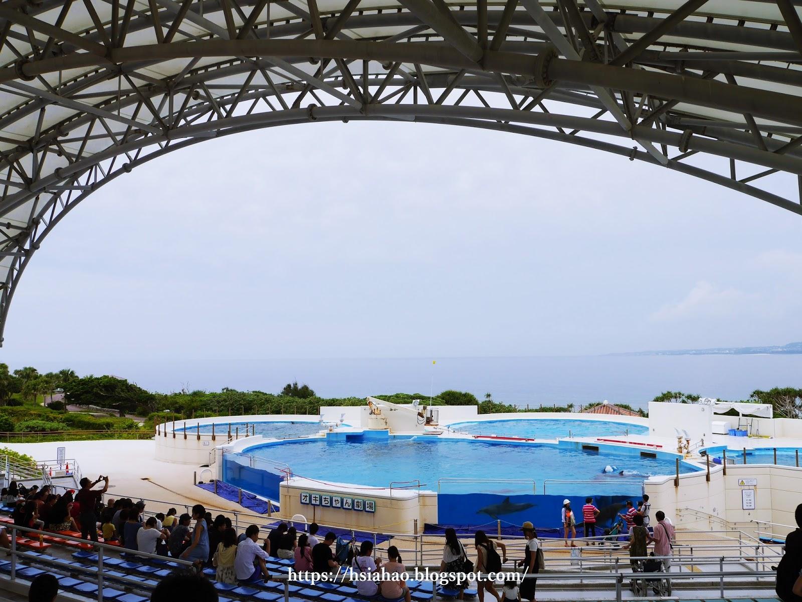 沖繩-海洋博公園-美麗海水族館-景點-自由行-旅遊-旅行-okinawa-ocean-expo-park-Churaumi