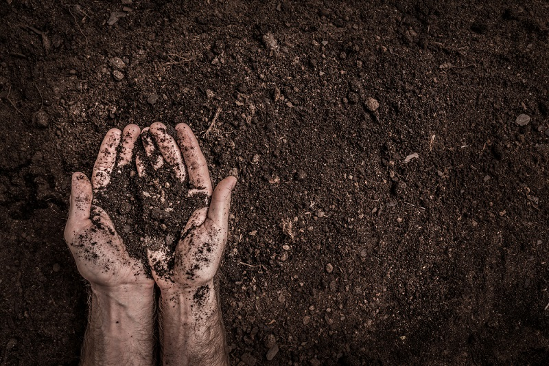Man (farmers) Hands on Soil Background