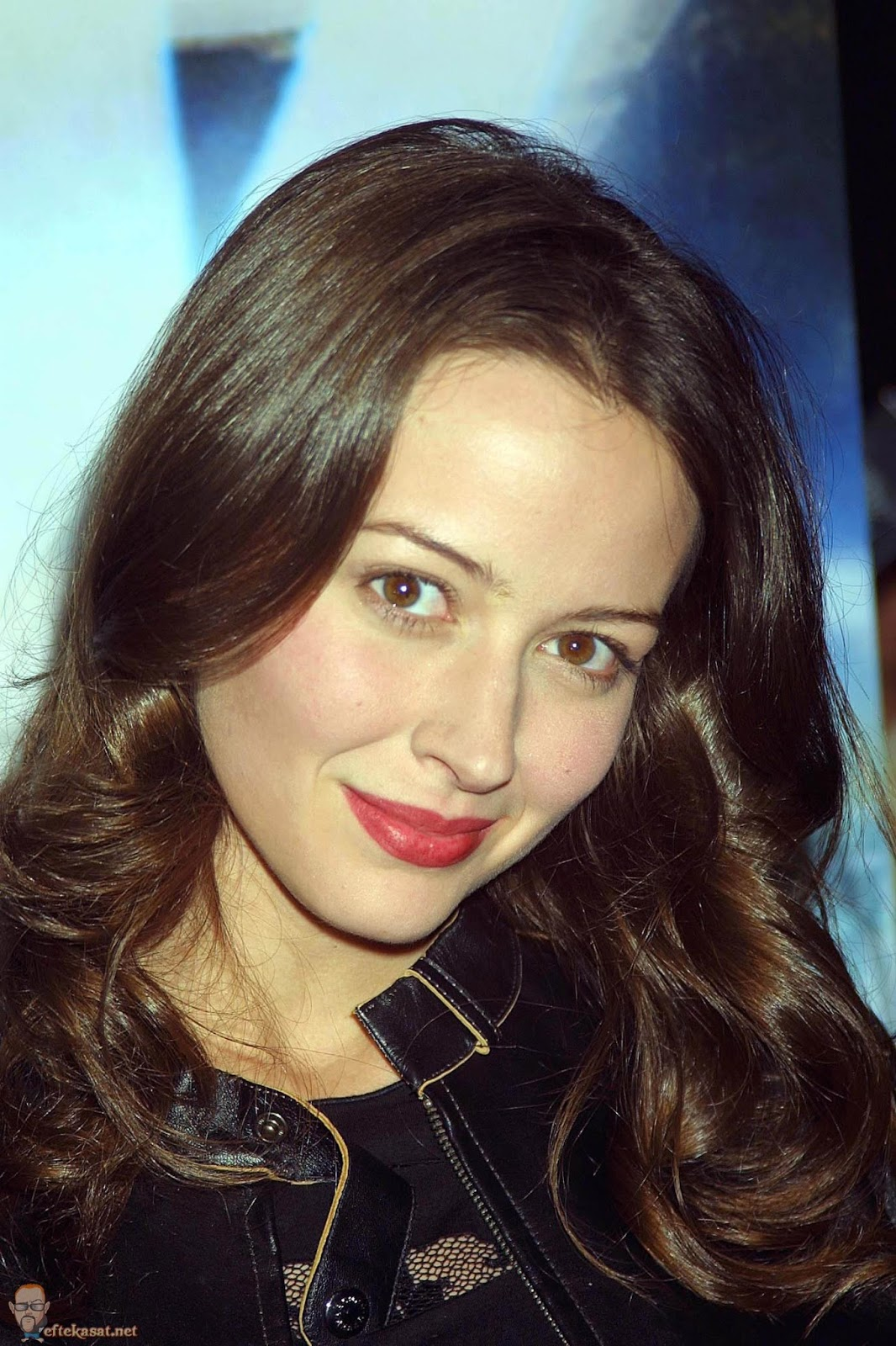 Amy Acker HD Wallpapers Free Download | Theroyalspeaker