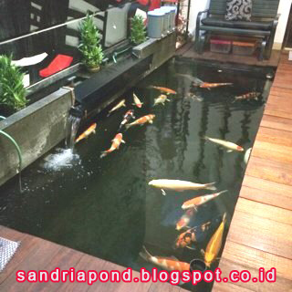 profesional kolam koi: koleksi kolam dan taman yang sudah