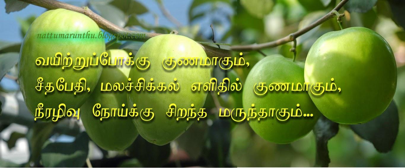 Nattu Marunthu: Benefits of Ber fruit