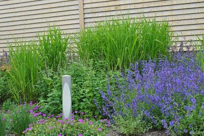 Ландшафтный дизайн в стиле котовника, kursk-garden