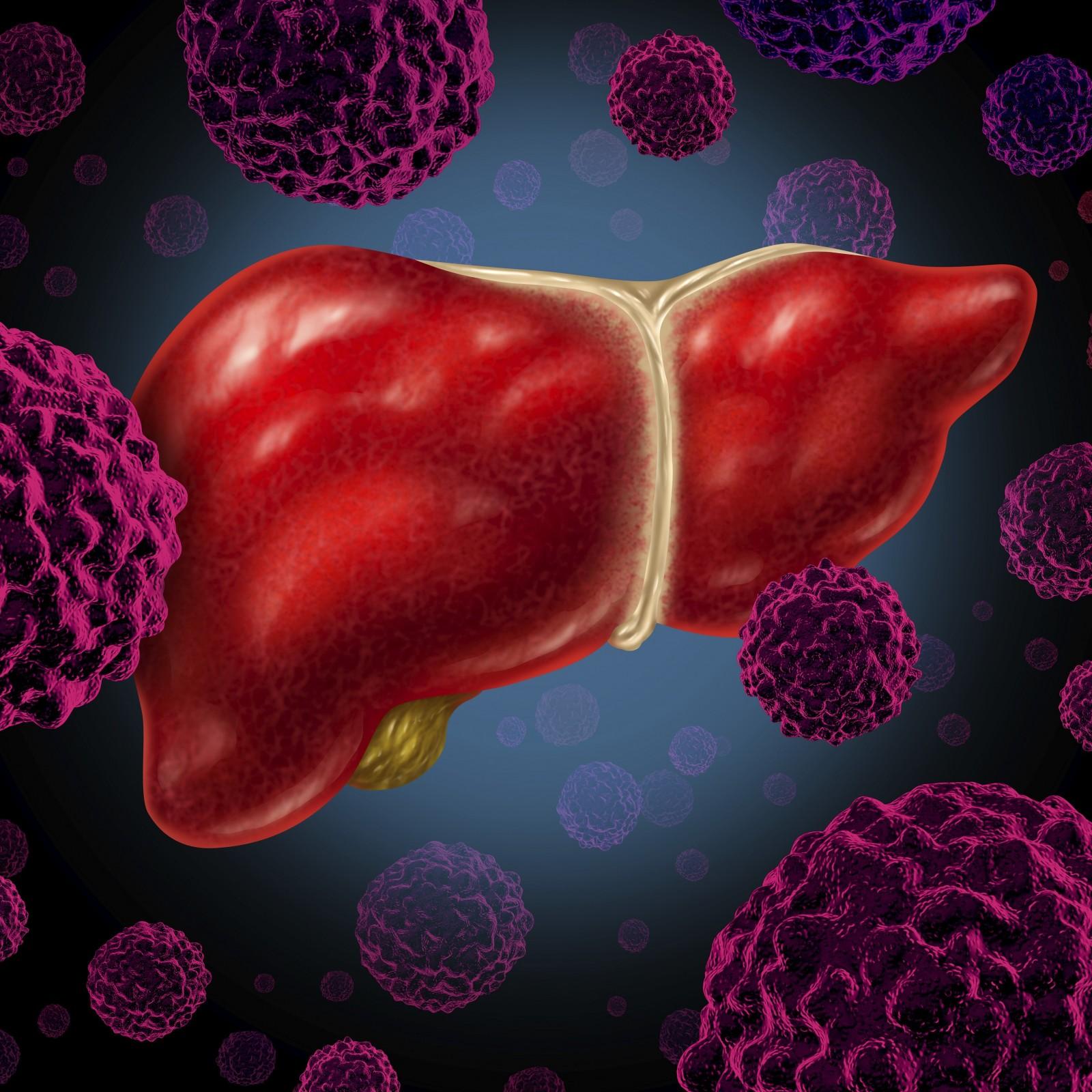 علاج فيروس الكبد بالعسل https://www.alharif.com