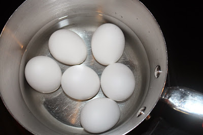 IMG 4759 - Pasteurizing Eggs