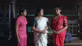 Malayalam Serial Actress Anushree Hot Photos