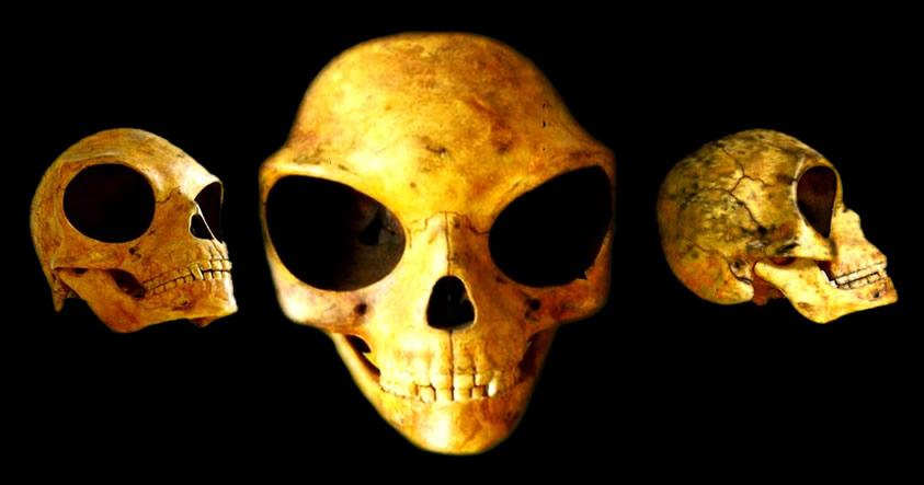 ¿Es este enigmático cráneo evidencia de la presencia extraterrestre en nuestro planeta?