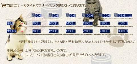 HP情報 猫カフェ ひとやすみ