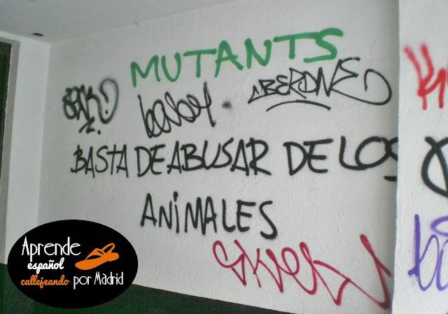 basta de abusar de los animales