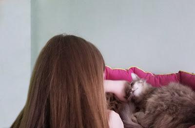 Самарский детский эколого-биологический центр: милая и ласковая кошечка