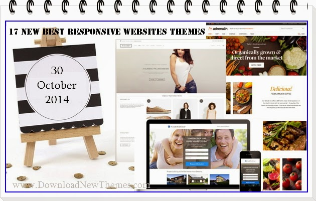 New Premium Responsive Websites Themes