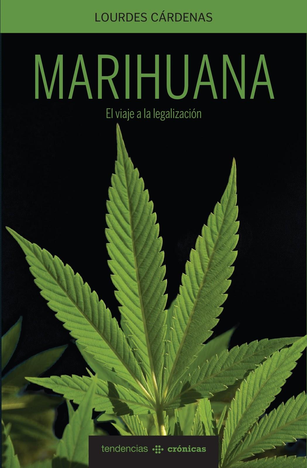 Cuál es el camino a seguir para legalizar la marihuana? | Noticias22