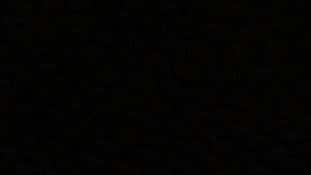 ব্লু হোয়েল চ্যালেঞ্জ- আসলে কি? নিশ্চিত মৃত্যুফাঁদ? নাকি আছে অন্যগল্প? আপনি কি ব্লু হোয়েলের থাবা থেকে নিরাপদ? (ব্লু হোয়েলের আদ্যোপান্ত)