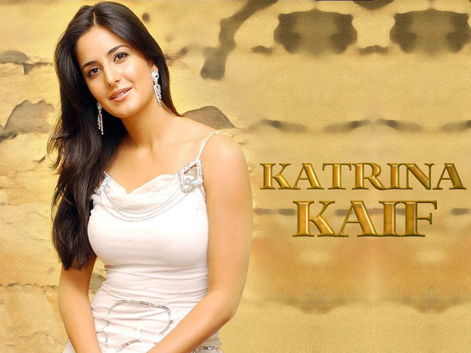 Hot Actress Hot Scene Hot Pics Katrina Kaif-5068