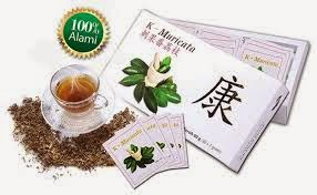 obat herbal penyakit batu empedu