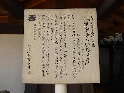 守口市 難宗寺(なんしゅうじ) イチョウ 案内板